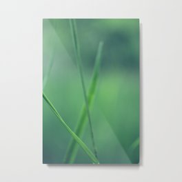 summergrass - nine Metal Print