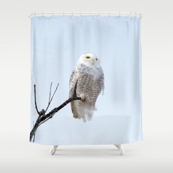 Lofty Vision Snowy Owl Shower Curtain