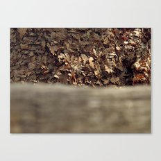 Nature morte Canvas Print
