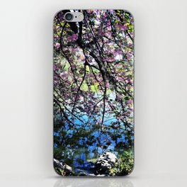 Walk Along the Cherry Blossoms iPhone Skin