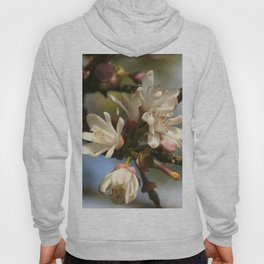 Orange Tree Flowers Hoody