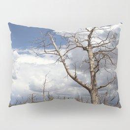 Big Sky Over Colorado Plateau Pillow Sham