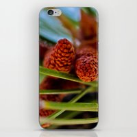 rustic iPhone & iPod Skins featuring Rustic by Nicole Dupee