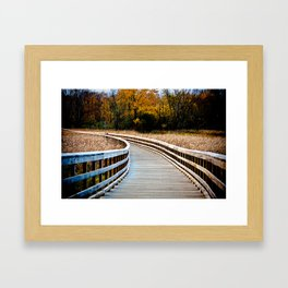 Walkway In A Field Framed Art Print