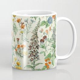 Vintage Scientific French Language Encyclopedia Lithograph Flowers  Coffee Mug