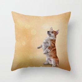 Dog breed Welsh Corgi Throw Pillow