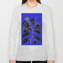 Western Nightshade (also know as Bush Tomato ) - Solanum chippendolei or Solanum coactilferum Long Sleeve T-shirt
