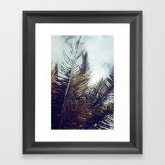 Palm Sky II Framed Art Print