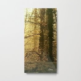 Cool Sunny Morning - right side Metal Print