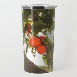 Fresh Apricots On The Tree Travel Mug