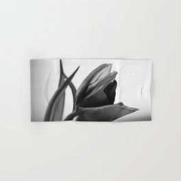 Tulip Blooming In Black And White Hand & Bath Towel
