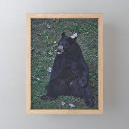 North Carolina Black Bear Framed Mini Art Print