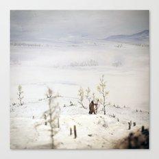 Tom Feiler Solitary Trapper Canvas Print