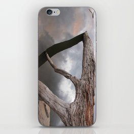 Suspended reflection iPhone Skin
