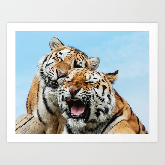 TIGERS - DOUBLE TROUBLE Art Print