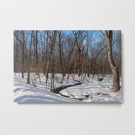 Frozen Freedom -horizontal Metal Print