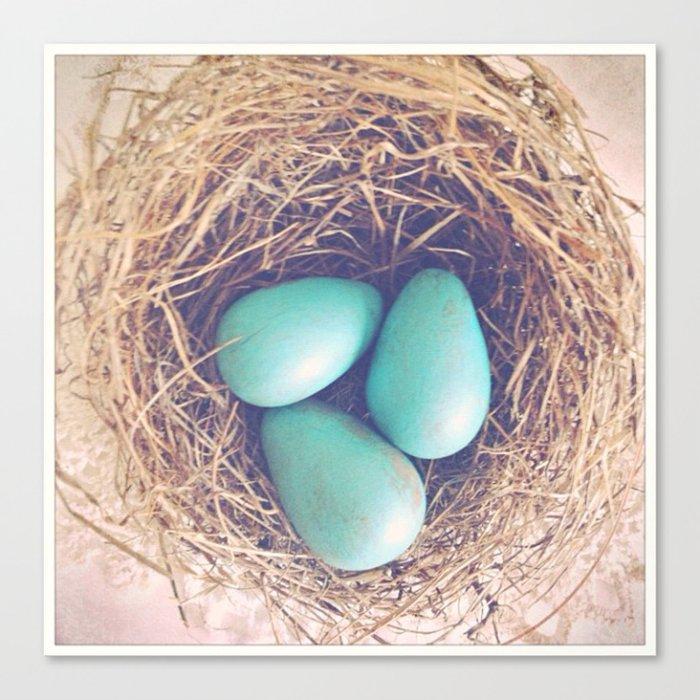 Blue Eggs Canvas Print