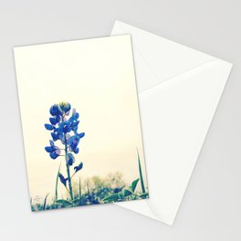 071 | austin Stationery Cards
