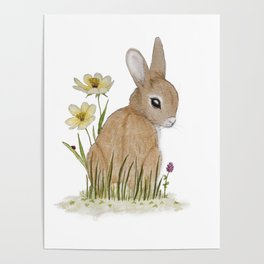 Rabbit Among the Flowers Poster
