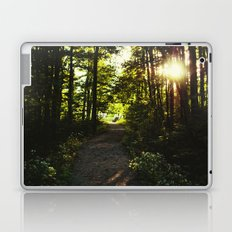 Woodland Path Laptop & iPad Skin