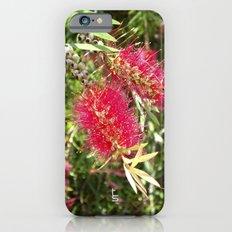 Crimson Bottle Brush iPhone 6s Slim Case