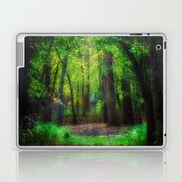 Fall Splendor 2 Laptop & iPad Skin