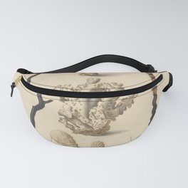Naturalist Coral Fanny Pack