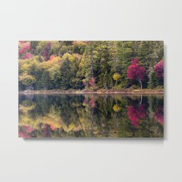 reflections in shallow lake Metal Print