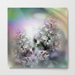 just some white lilacs Metal Print