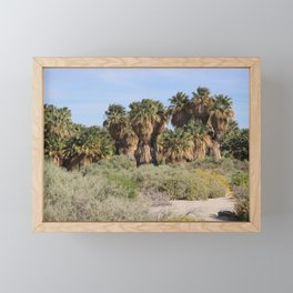 Path Through San Andreas Fault Desert Oasis 2 Coachella Preserve Framed Mini Art Print