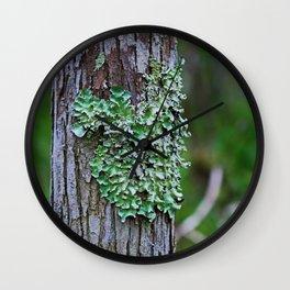 Likin' the Lichen Wall Clock