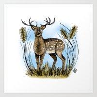 Deer - Colour Art Print