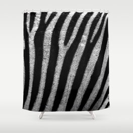 Striped | Shower Curtain