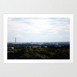 Capital View Art Print