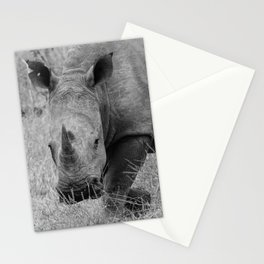 White Rhino Stationery Cards