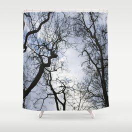 Branches of trees Shower Curtain