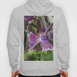Longwood Gardens Orchid Extravaganza 21 Hoody
