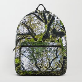 Centenary oak covered with moss and plants Backpack