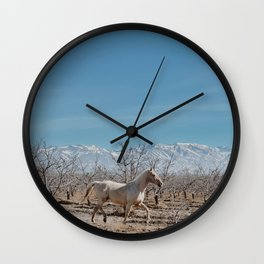 white horse Bolivia Wall Clock