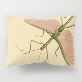 Naturalist Stick Bugs Pillow Sham