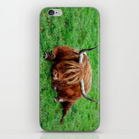 buffalo iPhone & iPod Skins featuring buffalo by  Agostino Lo Coco