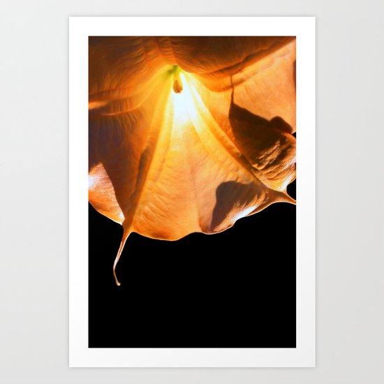 aurea Art Print