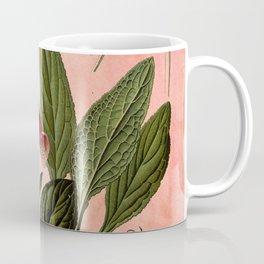 Vintage Botanical Illustration Collage, Foxgloves, Digitalis Purpurea Coffee Mug