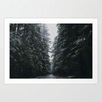 Where the Pine's Extend, Pt. 2 Art Print