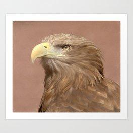 Sea Eagle Art Print