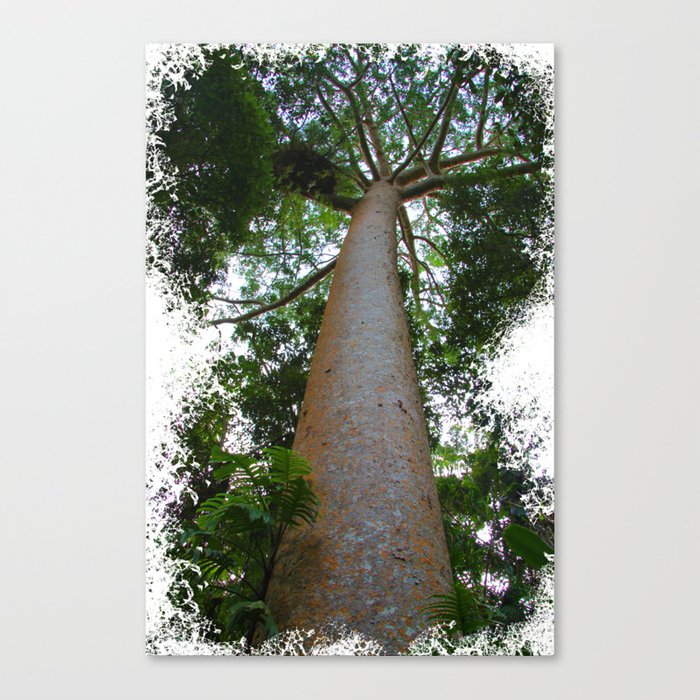 not just another tree Canvas Print