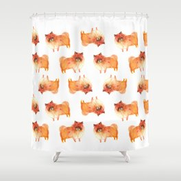 Pomeranian, pom puppy Shower Curtain