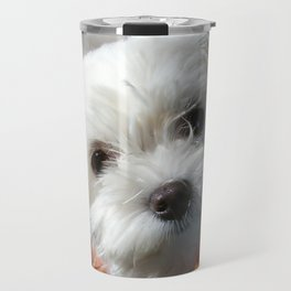 Cute Maltese asking for a treat Travel Mug