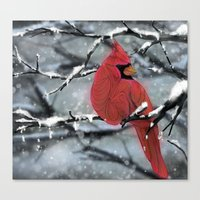 cardinal Canvas Prints featuring Cardinal by Ben Geiger
