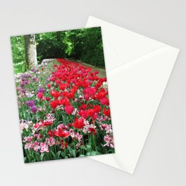 Tulips Path Stationery Cards